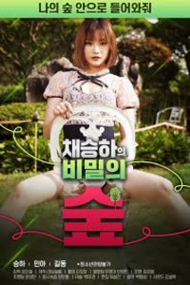 Chae Seung ha's Secret Forest poster